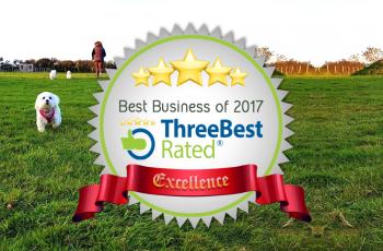 Best Dog Walking Field in Cornwall 2017