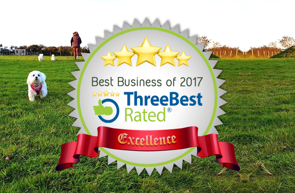 ThreeBestRated best Dog Walking Field in Cornwall Award
